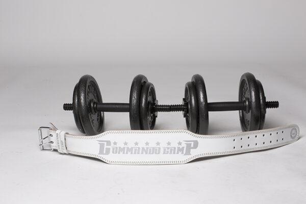 back belt for lifting